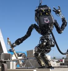 Robot at MIT